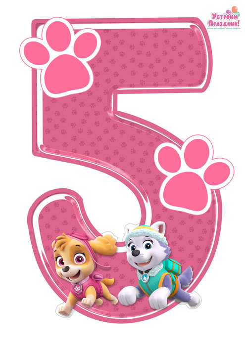 paw patrol birthday number 5 printable with sky and everest