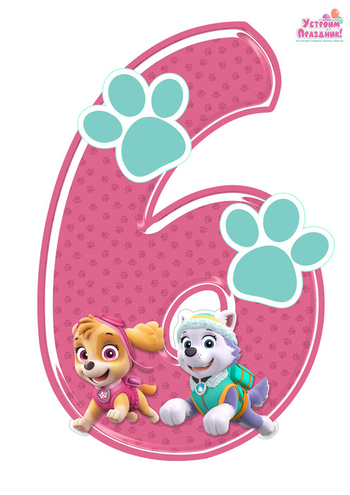 paw patrol birthday number 6 printable with sky and everest