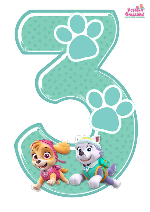 paw patrol birthday number 3 printable with sky and everest