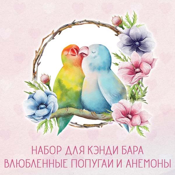 Набор для кэнди бара Влюбленные Попугаи шаблоны на день рождения скачать