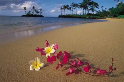 Как устроить гавайскую вечеринку