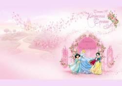 Приглашения для девочки «Принцессы Дисней»